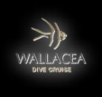 Wallacea Dive Cruise