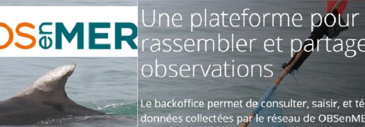 Initiative : le réseau OBSenMER, partageons les données