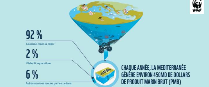 Méditerranée : le déclin de ses ressources s'accélère !