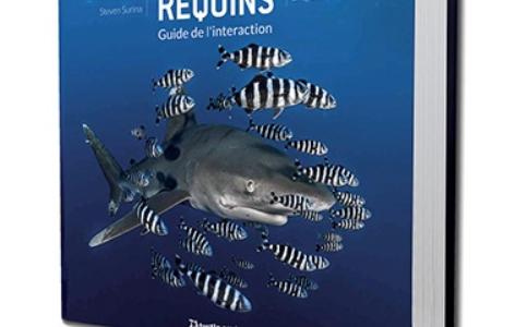 15 ans d'expériences avec les requins dans le livre (indispensable) de Steven SURINA