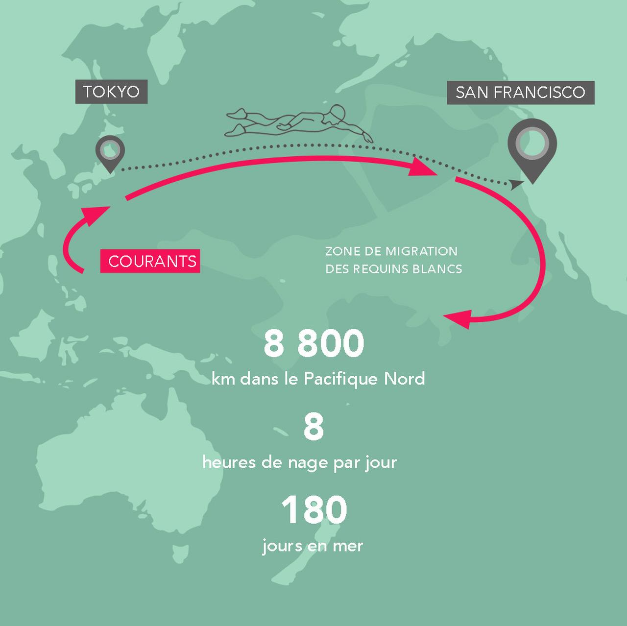 """LONGITUDE 181, partenaire de """"the Longest Swim"""", une expédition unique en 2018 !"""
