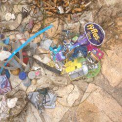 Déchets plastiques impliqués dans le réchauffement climatique…
