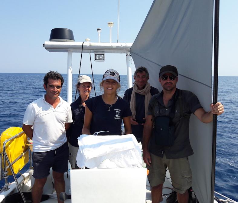 A l'écoute des cachalots de Méditerranée…