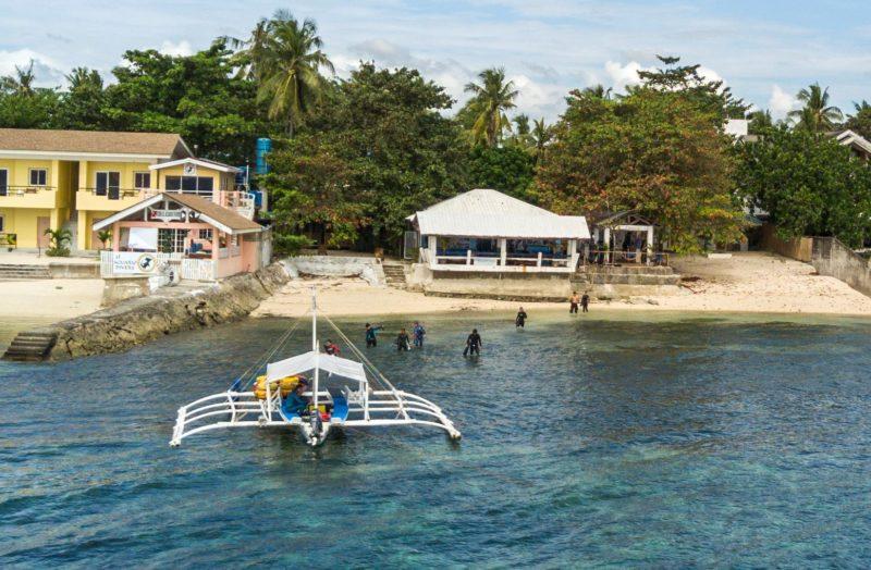 Freedive Headquarters