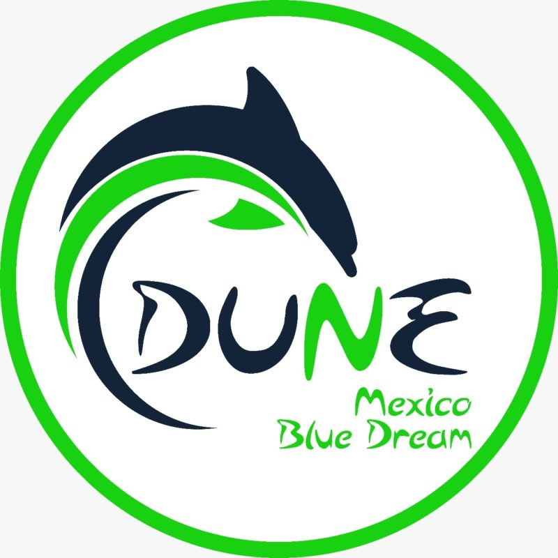 Dune Mexico Blue Dream