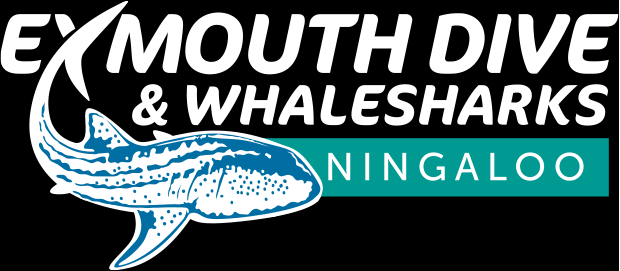 Exmouth Dive & Whalesharks Ningaloo