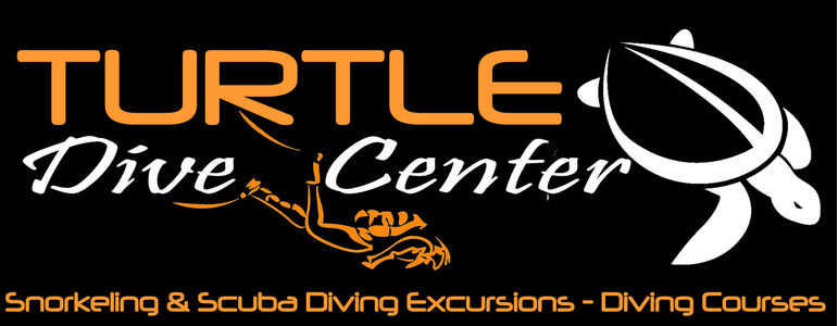 Turtle Dive Center