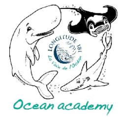 L'origami des océans pour petits et grands !