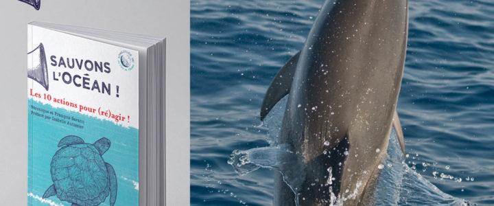 Ici commence l'Océan : La nouvelle grande campagne de Longitude 181